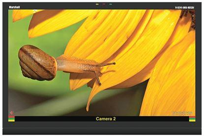 Picture of V-R241-IMD-HDSDI 24' Native HD Res. LCD Monitor  HDSDI/SDI and IMD